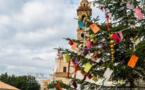 L'arbre de paix de Lumio : quelques-uns des messages des enfants...